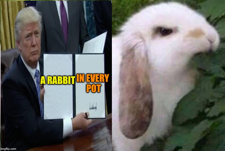 Just in case there's a chicken shortage. | A RABBIT IN EVERY POT | image tagged in trump bill signing,rabbit,memes,funny | made w/ Imgflip meme maker