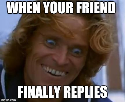 WHEN YOUR FRIEND FINALLY REPLIES | image tagged in willem dafoe face meme | made w/ Imgflip meme maker