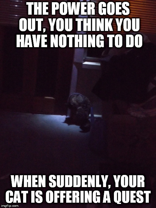 The quest being to let her outside... | THE POWER GOES OUT, YOU THINK YOU HAVE NOTHING TO DO WHEN SUDDENLY, YOUR CAT IS OFFERING A QUEST | image tagged in memes,video games,cat,quest,mission | made w/ Imgflip meme maker