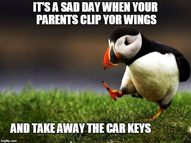 Unpopular Opinion Puffin Meme | IT'S A SAD DAY WHEN YOUR PARENTS CLIP YOR WINGS AND TAKE AWAY THE CAR KEYS | image tagged in memes,unpopular opinion puffin | made w/ Imgflip meme maker