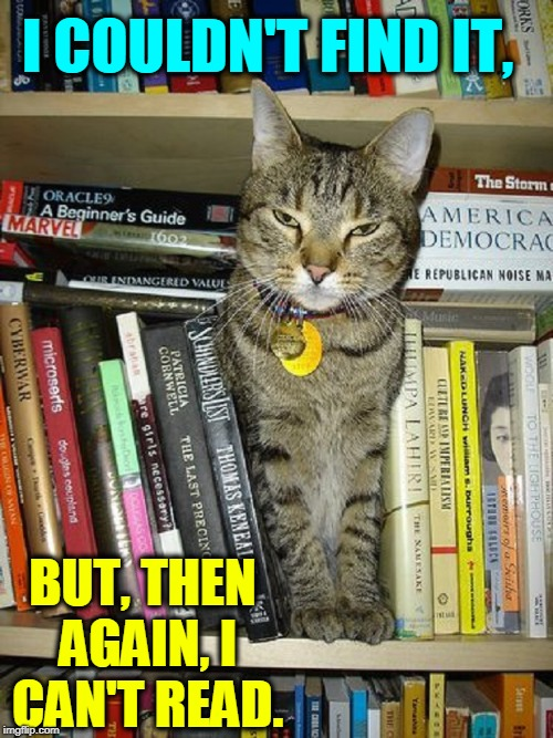 Libby, the Cat Librarian | I COULDN'T FIND IT, BUT, THEN AGAIN, I CAN'T READ. | image tagged in vince vance,cats,books,cat on a bookshelf,tabby cat | made w/ Imgflip meme maker