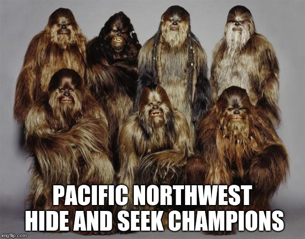 Wookies, Star Wars, Forest World Problems | PACIFIC NORTHWEST HIDE AND SEEK CHAMPIONS | image tagged in wookies,star wars,forest world problems | made w/ Imgflip meme maker