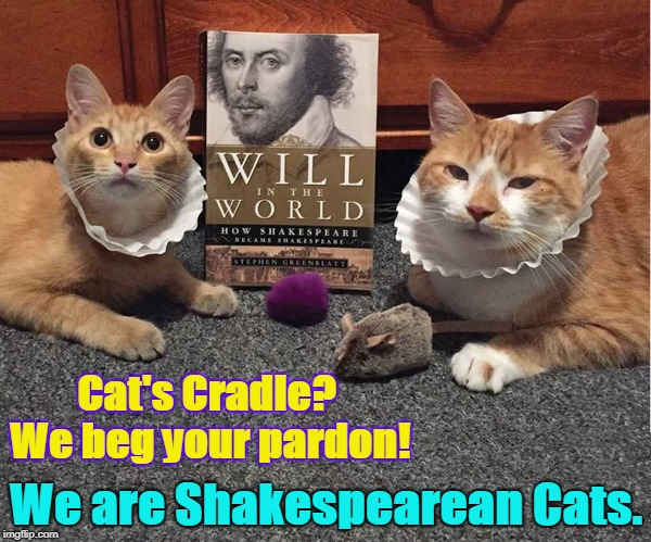 Cats with Coffee Filters around their Necks | Cat's Cradle? We beg your pardon! We are Shakespearean Cats. | image tagged in vince vance,well read cats,shakespeare,cat's cradle,cats,funnycats | made w/ Imgflip meme maker