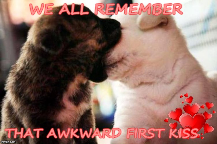 Do I tilt to the right... or the left??? | WE ALL REMEMBER THAT AWKWARD FIRST KISS | image tagged in memes,dogs,kiss,love stinks yeah yeah | made w/ Imgflip meme maker