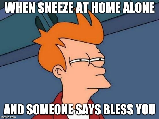Mr.Fozzil  | WHEN SNEEZE AT HOME ALONE AND SOMEONE SAYS BLESS YOU | image tagged in memes,futurama fry | made w/ Imgflip meme maker