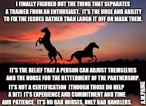 I FINALLY FIGURED OUT THE THING THAT SEPARATES A TRAINER FROM AN ENTHUSIAST.  IT'S THE URGE AND ABILITY TO FIX THE ISSUES RATHER THAN LAUGH  | image tagged in sunset with horses | made w/ Imgflip meme maker
