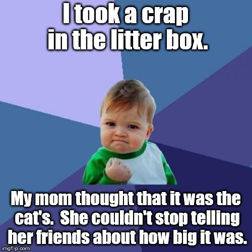 Success Crap | I took a crap in the litter box. My mom thought that it was the cat's.  She couldn't stop telling her friends about how big it was. | image tagged in memes,success kid | made w/ Imgflip meme maker