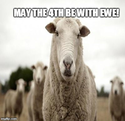 MAY THE 4TH BE WITH EWE! | made w/ Imgflip meme maker