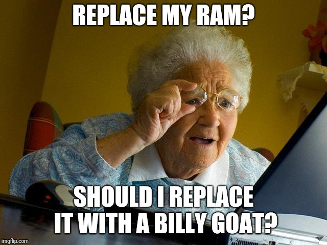 Grandma Finds The Internet Meme | REPLACE MY RAM? SHOULD I REPLACE IT WITH A BILLY GOAT? | image tagged in memes,grandma finds the internet | made w/ Imgflip meme maker