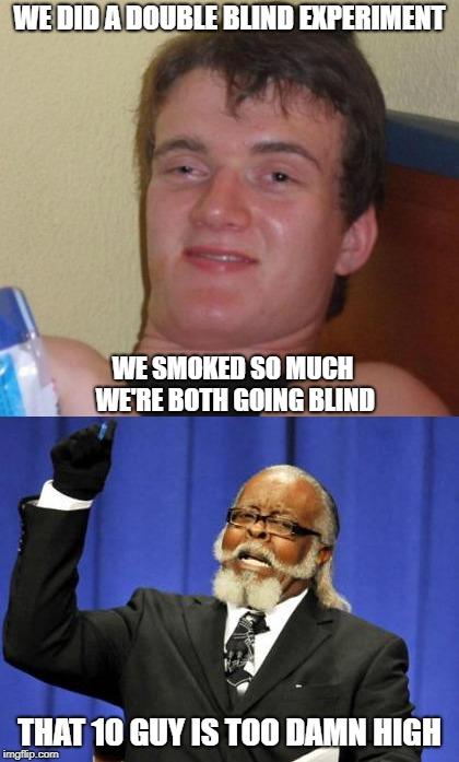 The Scientific Method? | WE DID A DOUBLE BLIND EXPERIMENT THAT 10 GUY IS TOO DAMN HIGH WE SMOKED SO MUCH WE'RE BOTH GOING BLIND | image tagged in memes | made w/ Imgflip meme maker