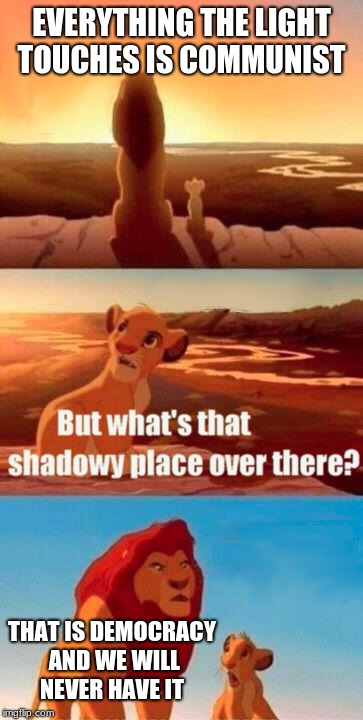 Simba Shadowy Place Meme | EVERYTHING THE LIGHT TOUCHES IS COMMUNIST THAT IS DEMOCRACY AND WE WILL NEVER HAVE IT | image tagged in memes,simba shadowy place | made w/ Imgflip meme maker