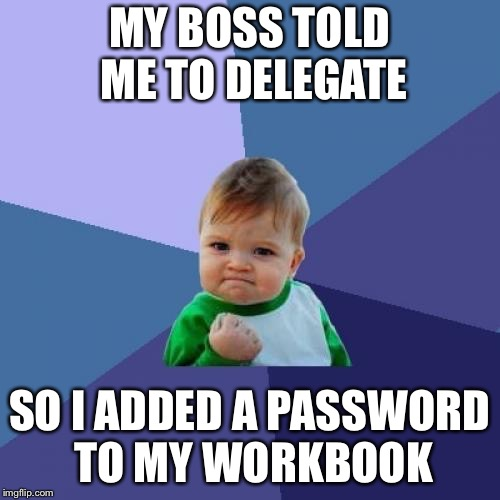 Success Kid Meme | MY BOSS TOLD ME TO DELEGATE SO I ADDED A PASSWORD TO MY WORKBOOK | image tagged in memes,success kid | made w/ Imgflip meme maker