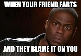 Kevin Hart The Hell Meme | WHEN YOUR FRIEND FARTS AND THEY BLAME IT ON YOU | image tagged in memes,kevin hart the hell | made w/ Imgflip meme maker