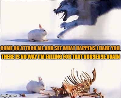 COME ON ATTACK ME AND SEE WHAT HAPPENS I DARE YOU THERE IS NO WAY I'M FALLING FOR THAT NONSENSE AGAIN | image tagged in rabbit vs wolf | made w/ Imgflip meme maker