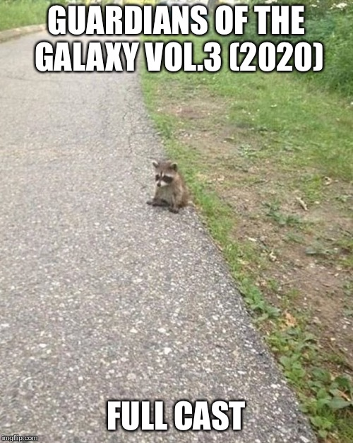 GUARDIANS OF THE GALAXY VOL.3 (2020) FULL CAST | image tagged in avengers,guardians of the galaxy | made w/ Imgflip meme maker