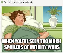 Accepting Your Death | WHEN YOU'VE SEEN TOO MUCH SPOILERS OF INFINITY WARS | image tagged in accepting your death | made w/ Imgflip meme maker