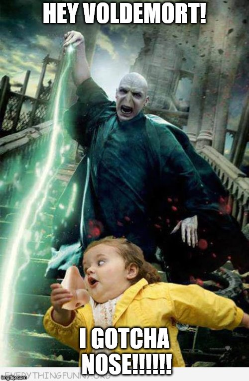 HEY VOLDEMORT! I GOTCHA NOSE!!!!!! | image tagged in voldemort with girl | made w/ Imgflip meme maker