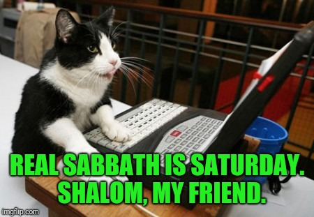 Fact Cat | REAL SABBATH IS SATURDAY.  SHALOM, MY FRIEND. | image tagged in fact cat | made w/ Imgflip meme maker