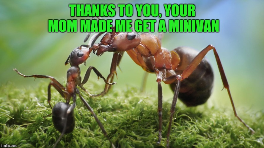 THANKS TO YOU, YOUR MOM MADE ME GET A MINIVAN | made w/ Imgflip meme maker
