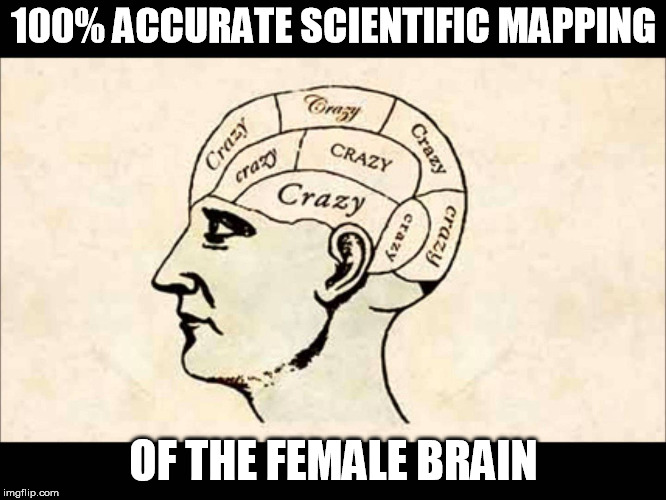 The female brain | 100% ACCURATE SCIENTIFIC MAPPING OF THE FEMALE BRAIN | image tagged in brain | made w/ Imgflip meme maker