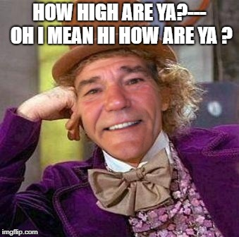 louie wanka | HOW HIGH ARE YA?--- OH I MEAN HI HOW ARE YA ? | image tagged in louie wanka | made w/ Imgflip meme maker