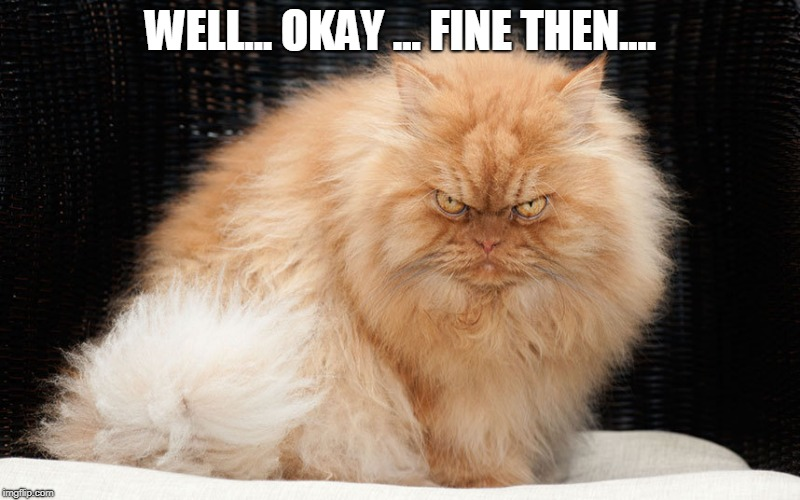 Angry Cat | WELL... OKAY ... FINE THEN.... | image tagged in angry cat | made w/ Imgflip meme maker