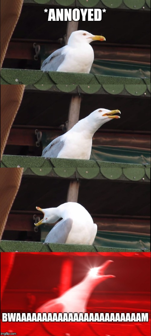 When someone bugs me when my trombone is out | *ANNOYED* BWAAAAAAAAAAAAAAAAAAAAAAAAM | image tagged in memes,inhaling seagull,trombone,bwaaaaaaam | made w/ Imgflip meme maker