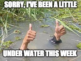 underWater | SORRY, I'VE BEEN A LITTLE UNDER WATER THIS WEEK | image tagged in underwater | made w/ Imgflip meme maker