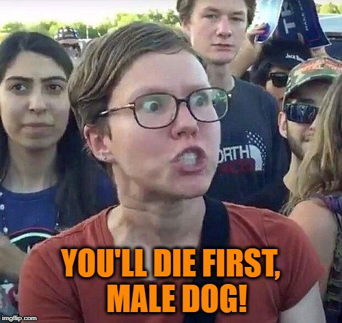 Triggered feminist | YOU'LL DIE FIRST,  MALE DOG! | image tagged in triggered feminist | made w/ Imgflip meme maker