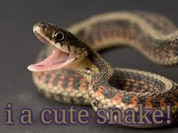 Warning Snake | i a cute snake! | image tagged in warning snake | made w/ Imgflip meme maker