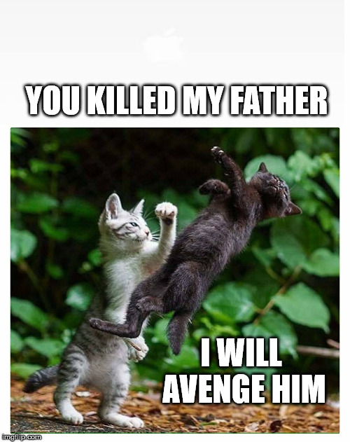 Kitty Fu | YOU KILLED MY FATHER I WILL AVENGE HIM | image tagged in kung fu,cat fight,father,killed,avenge,kung fu theater | made w/ Imgflip meme maker