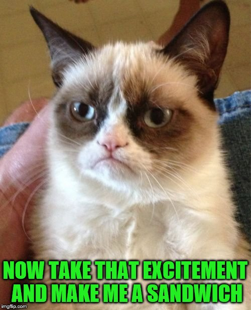 Grumpy Cat Meme | NOW TAKE THAT EXCITEMENT AND MAKE ME A SANDWICH | image tagged in memes,grumpy cat | made w/ Imgflip meme maker