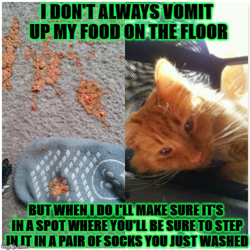I DON'T ALWAYS VOMIT UP MY FOOD ON THE FLOOR BUT WHEN I DO I'LL MAKE SURE IT'S IN A SPOT WHERE YOU'LL BE SURE TO STEP IN IT IN A PAIR OF SOC | image tagged in cats are turds | made w/ Imgflip meme maker