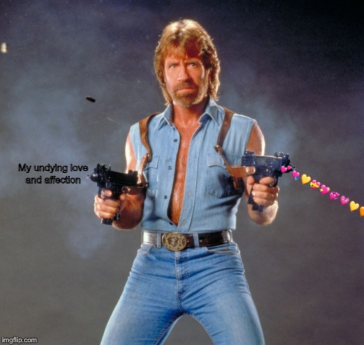 Chuck Norris Guns Meme | My undying love and affection  | image tagged in memes,chuck norris guns,chuck norris | made w/ Imgflip meme maker