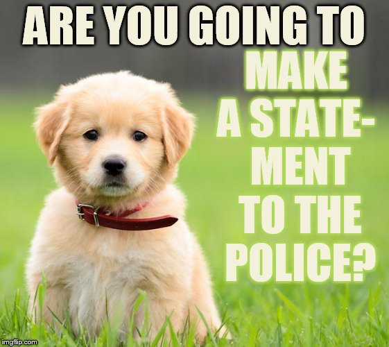 ARE YOU GOING TO MAKE A STATE-  MENT TO THE POLICE? | made w/ Imgflip meme maker