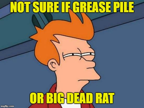 Futurama Fry Meme | NOT SURE IF GREASE PILE OR BIG DEAD RAT | image tagged in memes,futurama fry | made w/ Imgflip meme maker