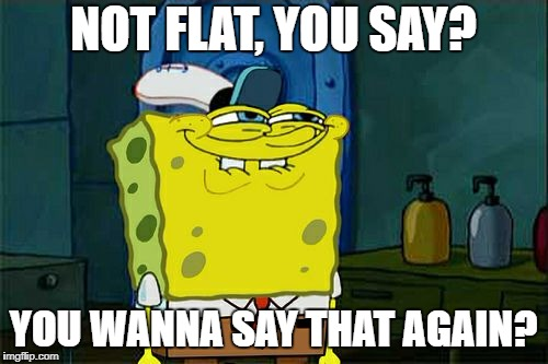 Dont You Squidward Meme | NOT FLAT, YOU SAY? YOU WANNA SAY THAT AGAIN? | image tagged in memes,dont you squidward | made w/ Imgflip meme maker