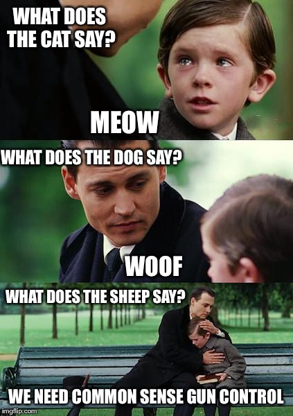 Finding Neverland Meme | WHAT DOES THE CAT SAY? MEOW WHAT DOES THE DOG SAY? WOOF WHAT DOES THE SHEEP SAY? WE NEED COMMON SENSE GUN CONTROL | image tagged in memes,finding neverland,guns,gun control,liberals | made w/ Imgflip meme maker