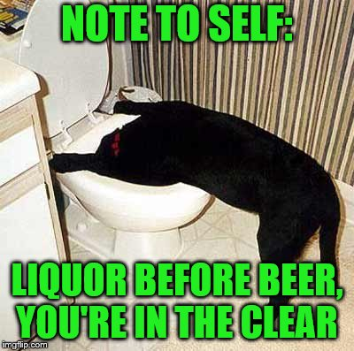 Round two - Inspired by JBmemegeek (Dog week May 1-8, a Landon_the_memer and NikkoBellic event) | NOTE TO SELF: LIQUOR BEFORE BEER, YOU'RE IN THE CLEAR | image tagged in memes,dog week,dogs,drinking,liquor,beer | made w/ Imgflip meme maker