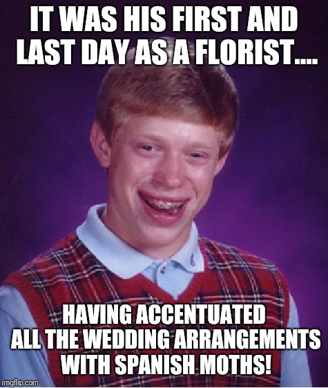 Oops | IT WAS HIS FIRST AND LAST DAY AS A FLORIST.... HAVING ACCENTUATED ALL THE WEDDING ARRANGEMENTS WITH SPANISH MOTHS! | image tagged in memes,bad luck brian,original meme,original,original memes,oops | made w/ Imgflip meme maker