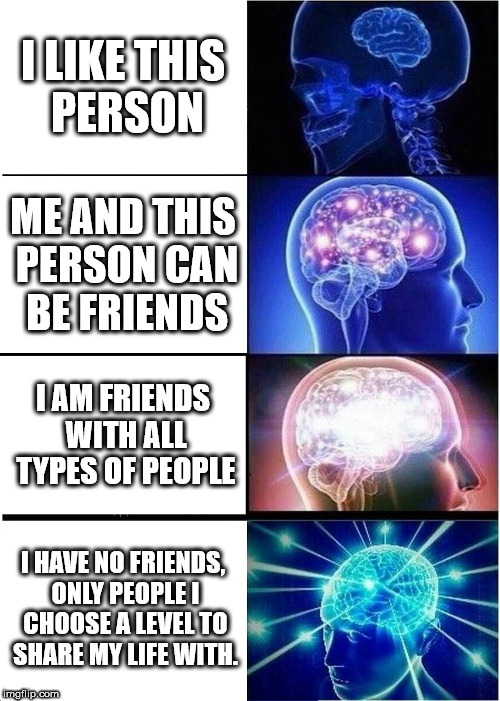 Expanding Brain Meme | I LIKE THIS PERSON ME AND THIS PERSON CAN BE FRIENDS I AM FRIENDS WITH ALL TYPES OF PEOPLE I HAVE NO FRIENDS, ONLY PEOPLE I CHOOSE A LEVEL T | image tagged in memes,expanding brain | made w/ Imgflip meme maker
