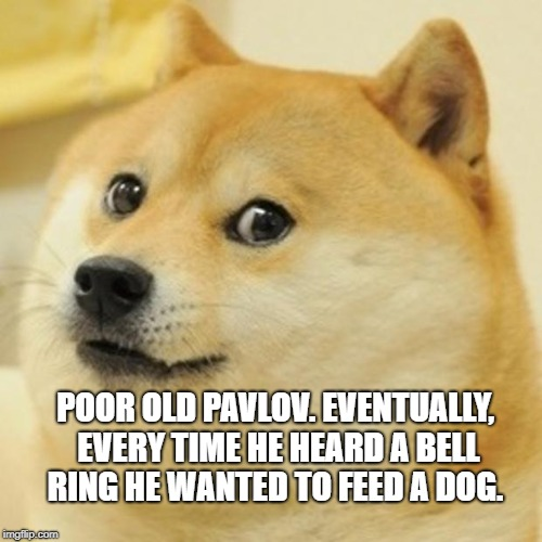Doge Meme | POOR OLD PAVLOV. EVENTUALLY, EVERY TIME HE HEARD A BELL RING HE WANTED TO FEED A DOG. | image tagged in memes,doge | made w/ Imgflip meme maker