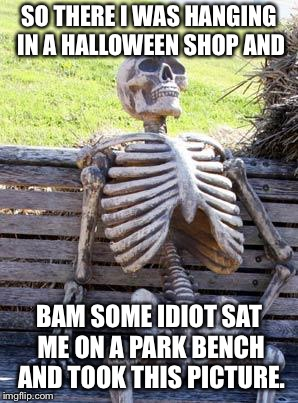 Waiting Skeleton Meme | SO THERE I WAS HANGING IN A HALLOWEEN SHOP AND BAM SOME IDIOT SAT ME ON A PARK BENCH AND TOOK THIS PICTURE. | image tagged in memes,waiting skeleton | made w/ Imgflip meme maker
