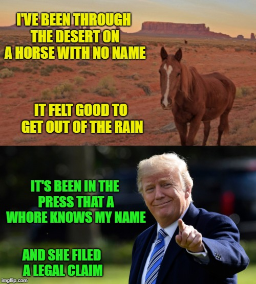 A Horse By Any Other Name | I'VE BEEN THROUGH THE DESERT ON A HORSE WITH NO NAME IT FELT GOOD TO GET OUT OF THE RAIN IT'S BEEN IN THE PRESS THAT A W**RE KNOWS MY NAME A | image tagged in trump,stormy daniels | made w/ Imgflip meme maker