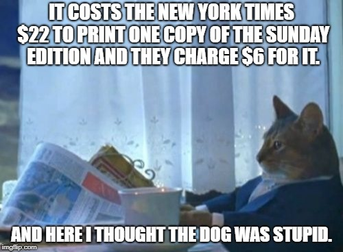 Reminds me of the old joke.. So how do they make money ? Volume ! | IT COSTS THE NEW YORK TIMES $22 TO PRINT ONE COPY OF THE SUNDAY EDITION AND THEY CHARGE $6 FOR IT. AND HERE I THOUGHT THE DOG WAS STUPID. | image tagged in memes,i should buy a boat cat,faulty math,economics 101,advertising revenues are down too so | made w/ Imgflip meme maker