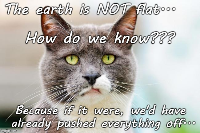 Earth not flat... | The earth is NOT flat... Because if it were, we'd have already pushed everything off... How do we know??? | image tagged in cats,push,already,earth,flat | made w/ Imgflip meme maker