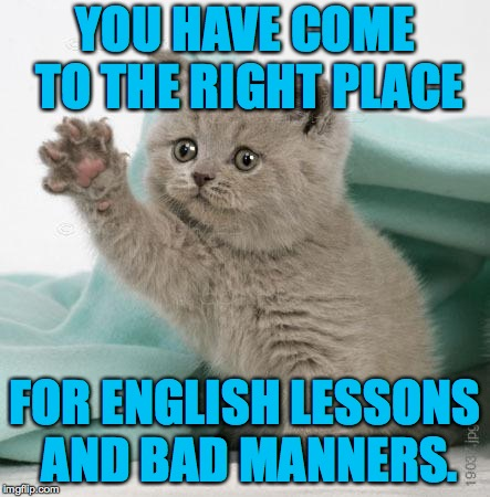 YOU HAVE COME TO THE RIGHT PLACE FOR ENGLISH LESSONS AND BAD MANNERS. | made w/ Imgflip meme maker