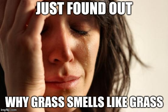 When you find out why grass smells like grass | JUST FOUND OUT WHY GRASS SMELLS LIKE GRASS | image tagged in memes,first world problems,grass,plants,smell,crying | made w/ Imgflip meme maker