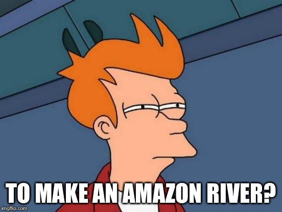 Futurama Fry Meme | TO MAKE AN AMAZON RIVER? | image tagged in memes,futurama fry | made w/ Imgflip meme maker