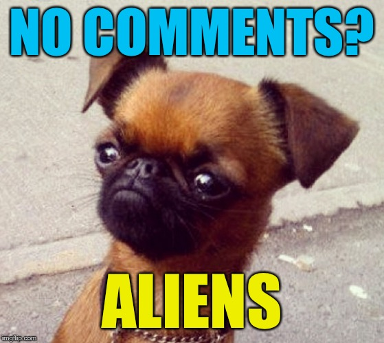 Crumpet | NO COMMENTS? ALIENS | image tagged in crumpet | made w/ Imgflip meme maker